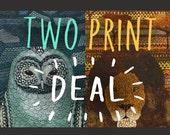 Special bundle of x2 A4 Illustrations - Owl & Lion - FREE UK POSTAGE!