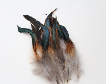 "Natural Brown / TWO-TONED / Rooster Feathers with Black Ends / 4""- 6"" high / 50 feathers"