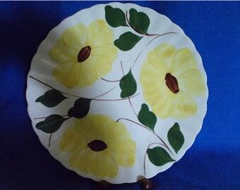 Blue Ridge Pottery Plate Handpainted Southern Pottery Yellow Flowers USA