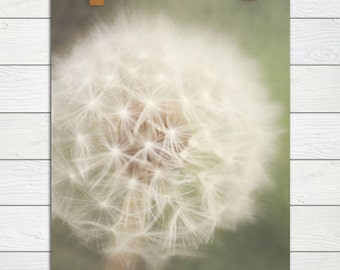 Little Wishes - Photographic Print - Dandelion, Macro, Green, Whimsical, Dreamy, Photograph, Wall, Decor, Hanging, Cottage, Chic