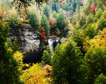 Fine Art Photography- Fall foliage - Home Decor- Autum- Art Print- Tennessee-Fall Creek Falls- 8x10--Wall art-red-yellow-trees-waterfalls