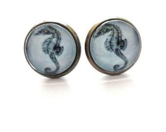Earrings Seahorse