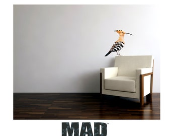 wall sticker wall decal HOOPOE