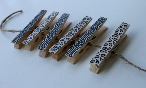 Decorative Clothes Pins Set