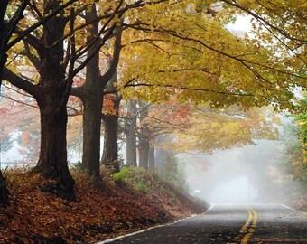 """Landscape photograph titled """"Maple Hollow"""""""