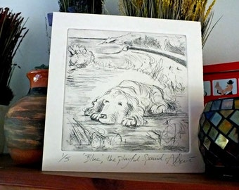 Blue the playful Spaniel, Drypoint