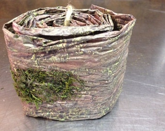 Bark and Moss Ribbon/Wrap 3.75 inches wide x 5 feet