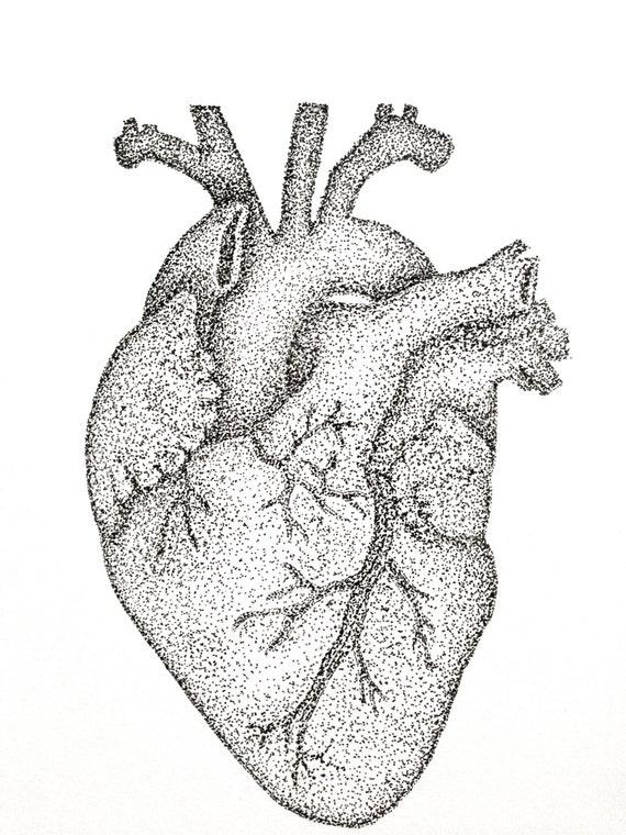 Anatomical Human Heart Original Artwork Black and by POTSnDOTS