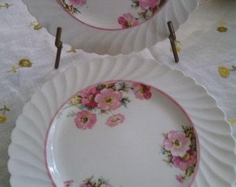 100+ yrs. Royal Staffordshire English Rose Salad/Dessert Plates (7) Price Reduction