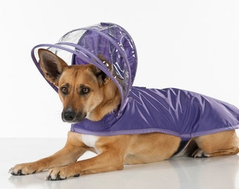 Dog Raincoat - Purple - Rainbow Line