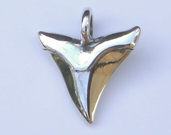 Silver shark's tooth pendant.