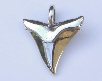 Shark tooth nechkace , silver shark's tooth pendant.