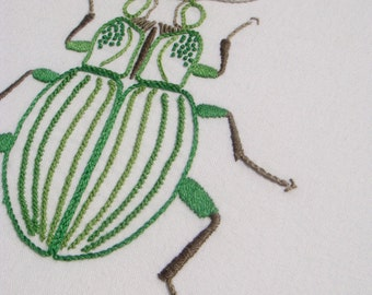 Anatomical Beetle modern hand embroidery pattern - modern embroidery PDF pattern, digital download
