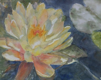 Original Watercolor Painting, Yellow Water Lily, Plein Air,  Matted, 300lb. Arches Paper, Award Winning Professional Artist Susie Burns