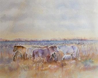"Ponies, Original watercolour painting, 12""x12"" Home decor, Fine Art, Horse Lovers, Horse painting, Original Art, Pony painting, Artwork"