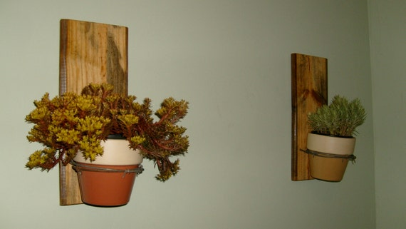 wall hanging plant holders on reclaimed wood. Black Bedroom Furniture Sets. Home Design Ideas
