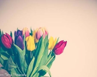 Tulips fine art photograph, Flower photography, home decor, spring photo
