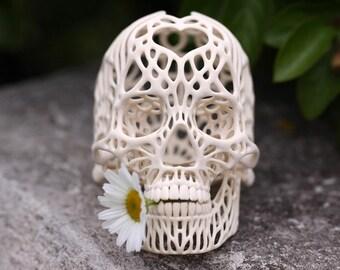 3D Printed Human skull.