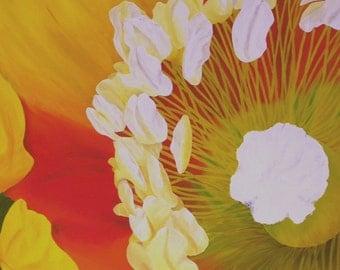"Poppy Oil Painting, Flower Painting, Yellow, Flower, Large, Amapola, Original Oil Painting - ""Amapola Amarilla"" (30"" x 48"")"