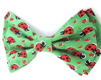 Dog Bow Tie / Lady Bug