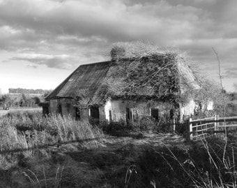 "Kiltale, Meath, Ireland. Cottage in Ruins: 8"" x 10"""