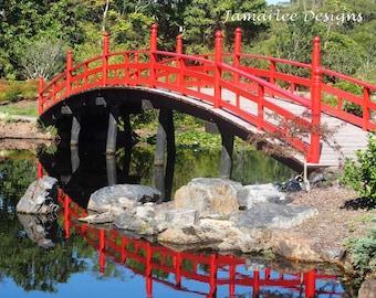A taste of Japan in the Coffs Coast Botanical Gardens