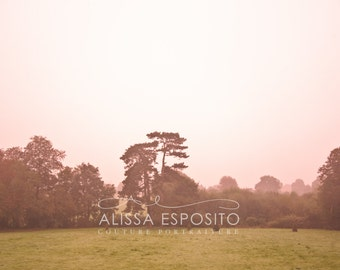 French Countryside, Sunrise, France Travel Photography, Pink,   8x10, 11x14, 16x24, 20x30, Landscapes, Home Decor