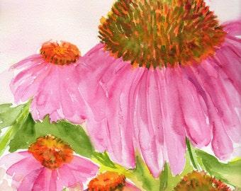Coneflowers painting. Echinacea  watercolors paintings original, Flower Painting,  Floral Wall Art, MUW Perennial Garden, floral wall art