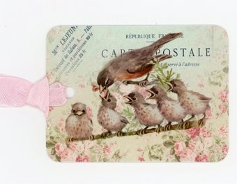 Bird Gift Tags , Baby Birds , Robin , Shabby and Chic , Gift Tags by Bluebird Lane