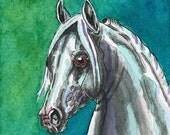 ACEO Grey Arabian Arab Horse Original Watercolor & Ink Art