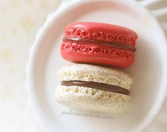 French Dessert Magnet - Raspberry and Vanilla Hazelnut Macaron