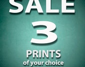 Print Set Special, Any 3 Prints of your Choice in 10x10, 10x13 or 10x15 for 125.00 Signed Prints, Discounted Purchase