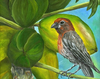 PAPAYA PARADISE Original Oil Painting 8x10 Art Artwork Tropical Bird House Finch Papayas Fruit Tree Hawaii Hawaiian Audubon Tropics Tweet
