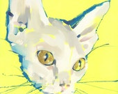 "Hairless Pussy - Fine Art Print by Jonny Ruzzo - 13"" x 13"""