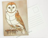 Barn Owl Postcard - Clockwork Bird steampunk illustration print