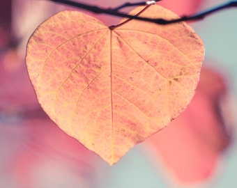 Items Similar To Waiting Redbud Tree Red Heart Leaf