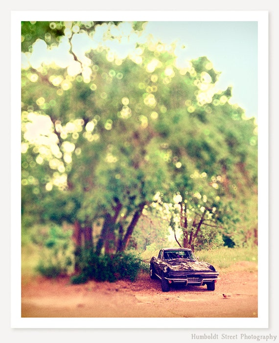 Corvette Summer - Classic Car Art - Corvette Photograph - Vintage Car Photo - Nostalgic Summer Art Print