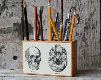 Medical Desk Caddy Medium: No. 2, Skulls - Desk Organizer, Office Desk Accessories, Pencil Holder, Tool Caddy, Utensil Caddy, Peg and Awl