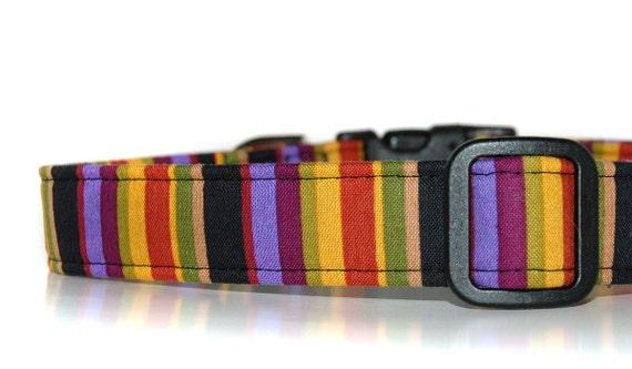 Bewitched, Dog Collar,,,,,,,Dog Collar Custom Halloween Dog Collar