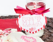 Valentine PRINTABLE 'You're The Milk To My Cookie'  Classroom Tag by Love The Day