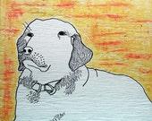 Animal Custom Portrait - pet custom portrait
