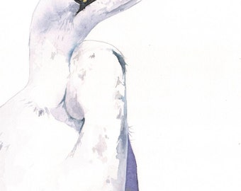 Egret watercolor painting - print of watercolor painting bird art A4 medium print, bird art, wall art, home decor