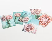 Pink Dahlia Blank Cards - Pink Flowers set of 12 - Shabby Chic Cottage style