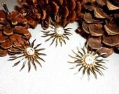 Beautiful Sara Coventry Starburst Pin Brooch & Earrings Set
