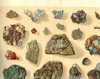 LARGE Vintage 1894 Minerals Print Antique Gems Precious Stones 3 gemstones print, bookplate art print, minerals wall print wall art