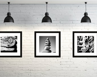 Nature Black and White Print Set of 3 Beautiful Fine Art Photography Wall Art For Home Decor