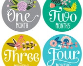Floral Baby Stickers by Lucy Darling - Floral Hand Lettering - Months 1-12