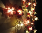 35 Globes Magenta Tone Frangipani Fairy Lights String Accent Floral Party Patio Wedding Floor Table or Hanging Gift Home Decoration 4m.