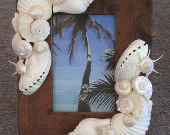 Beach Decor Seashell Picture Frame - Shell Frame - White Shell Picture Frame - Beach wedding