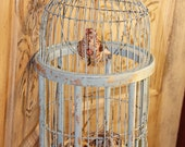 Blue birdcage with nest and bird, vintage birdcage, wood birdcage, birdcage decor, paper nest, Mediterranea Design Studio